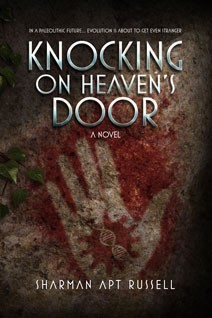 KnockingOnHeavensDoor
